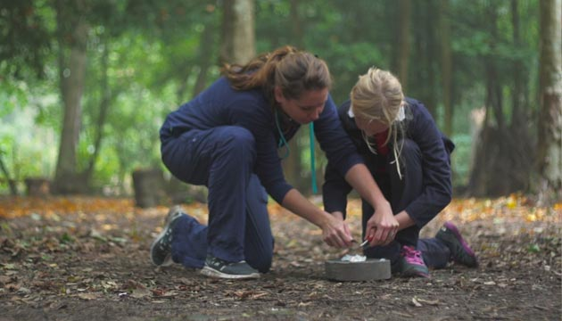 Northbourne Park School leadership